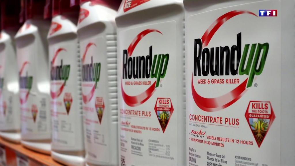 Monsanto condamné à une amende record