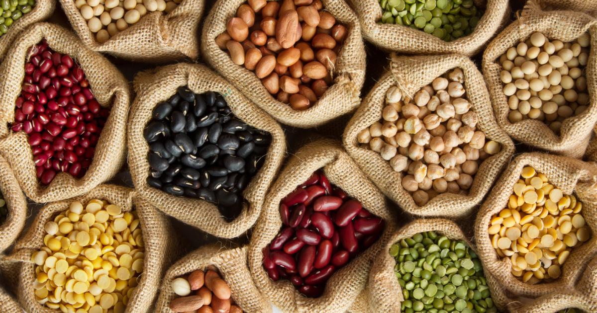 Les semences paysannes bientôt de retour dans nos assiettes